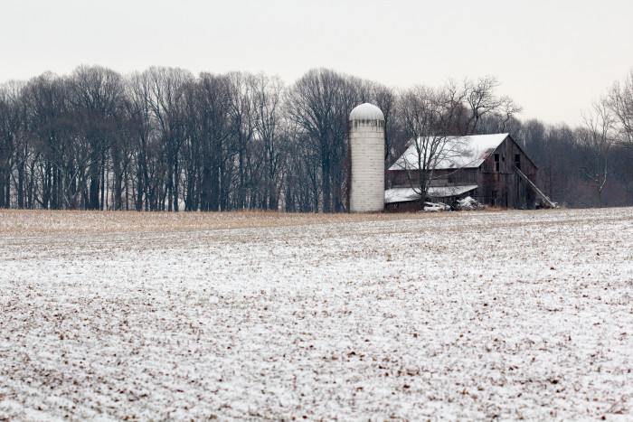 Day 8 - January 8, 2011 - Silo and Barn