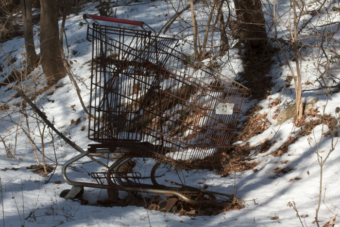 Day 34 - February 3, 2011 - Shopping Cart