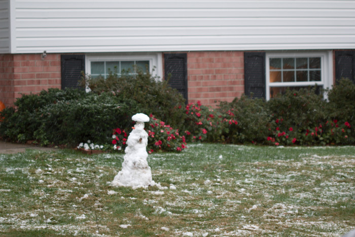 Day 302 - October 29, 2011 - Snowman